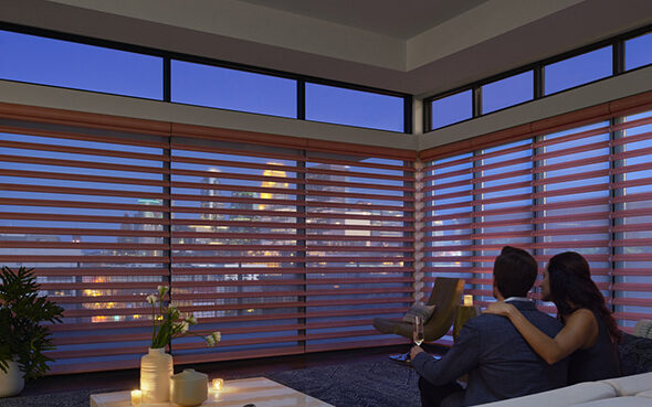 pirouette roman shade sheers translucent light control privacy window shading greenguard certified ultraglide powerview motorization