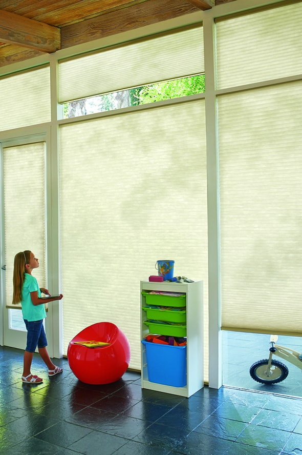 Enjoy Convenience with Automated Shades near Feasterville, Pennsylvania (PA) like Powerview Automation and energy efficiency