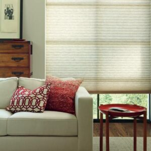 Duette® Architella® Honeycomb Shades Feasterville, Pennsylvania (PA) the year-round benefits of vertical cellular shades